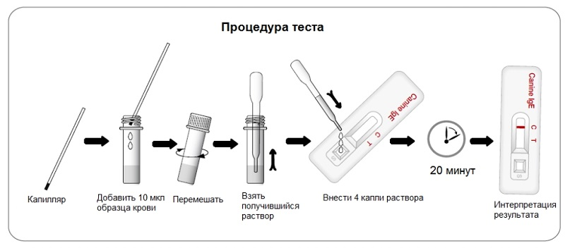 Процедура определения иммуноглобулина