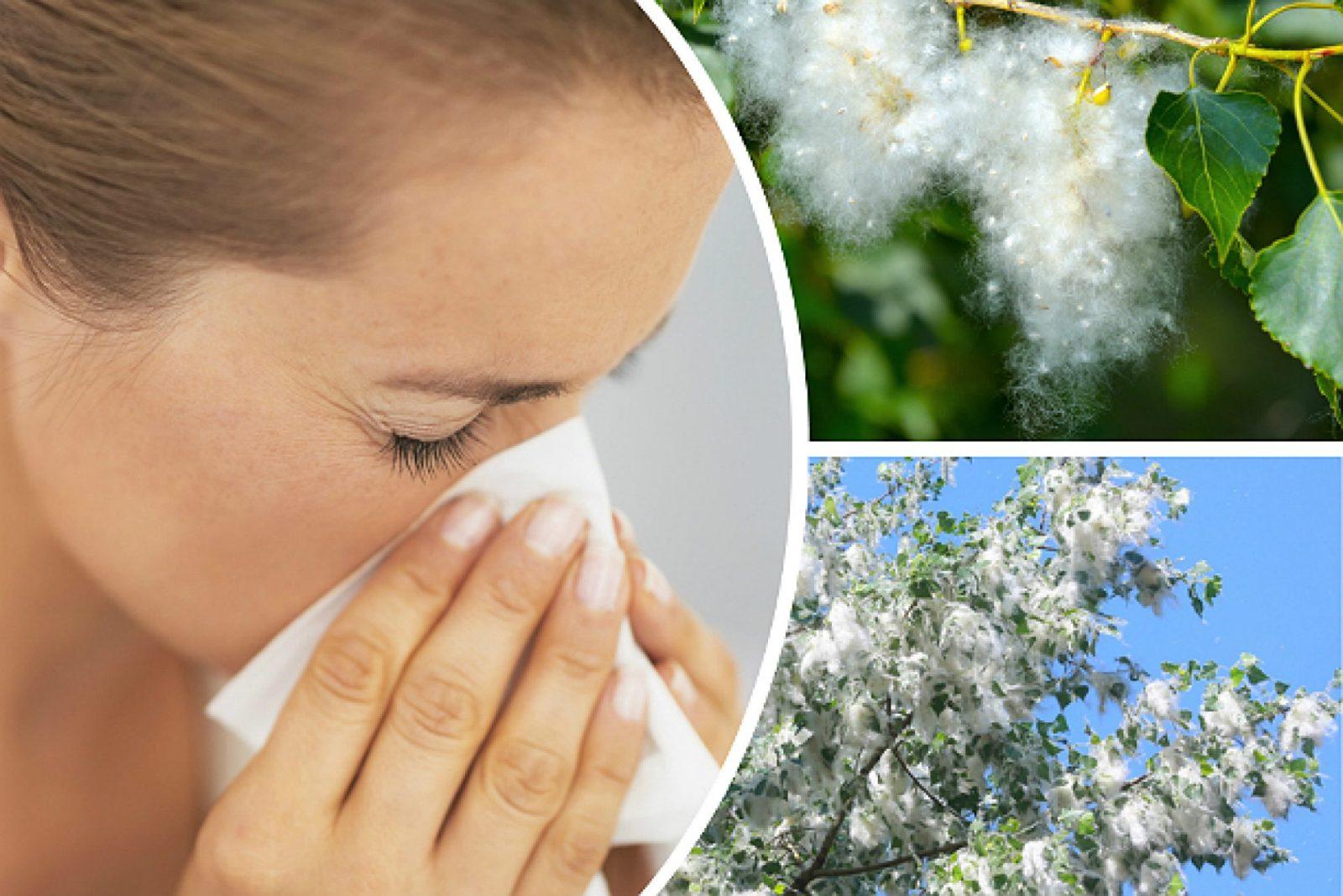 Показательная картинка с аллергией