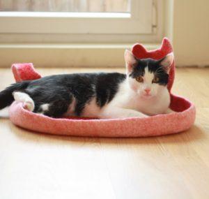 Кошачье место в доме