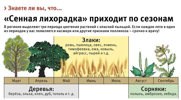 сезонная аллергия на пыльцу растений