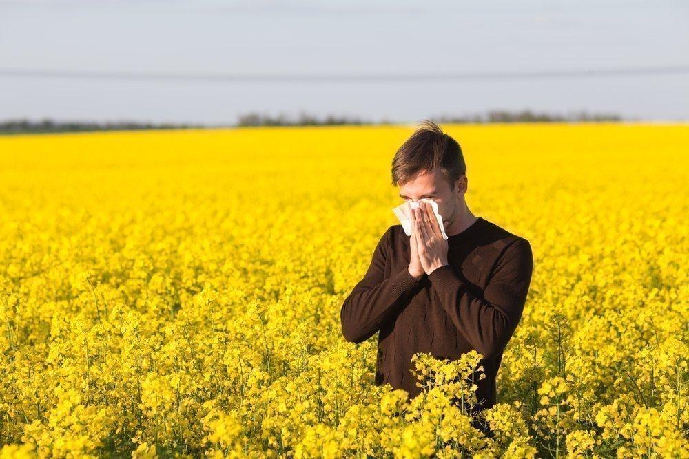 Аллергик среди цветов