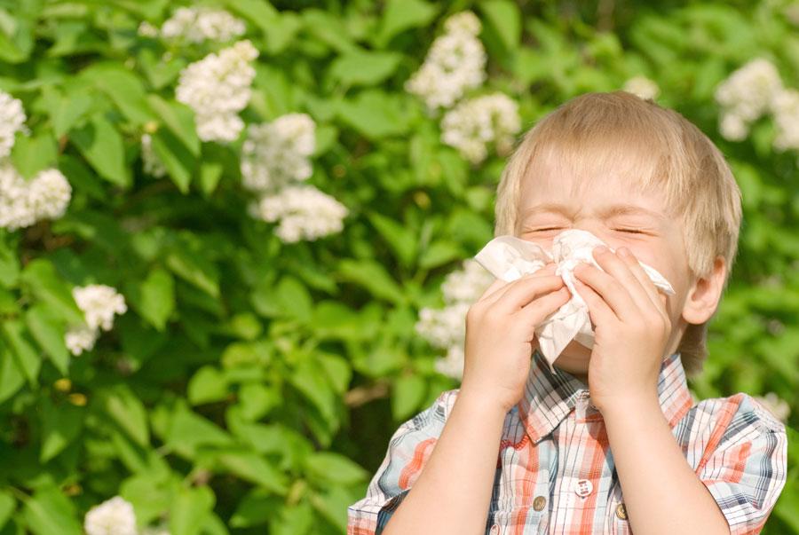 Аллергия весной