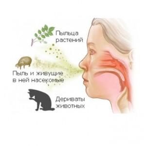 Оральная аллергия