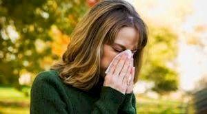 аллергия на деревья