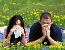 Двое взрослых чихают