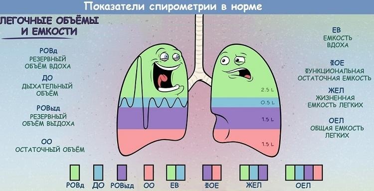 Показатели в норме