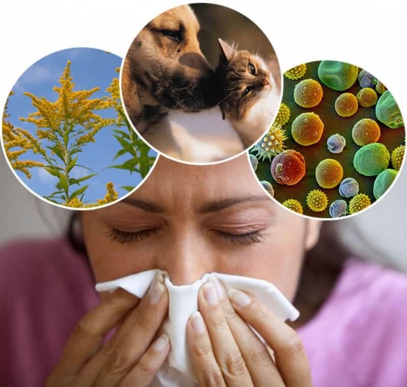 Аллергия на разные вещи